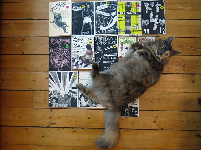 Cat lying on a pile of zines