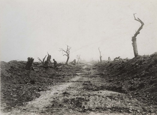 Western front, 1916